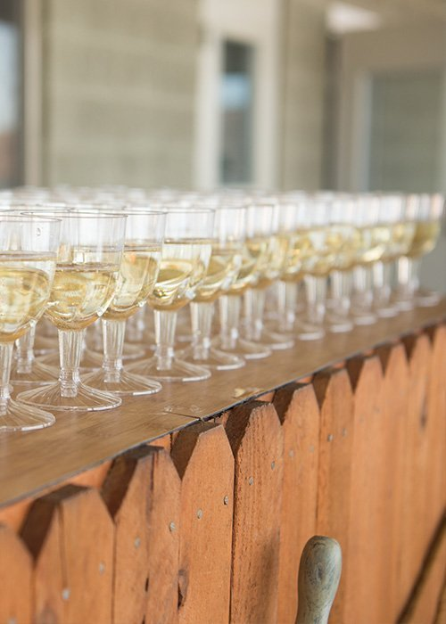 Wedding Champagne Toast Guests